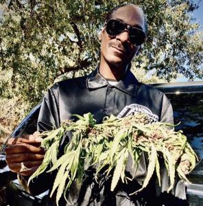 Snoop dog on Huckleberry Hill Farms