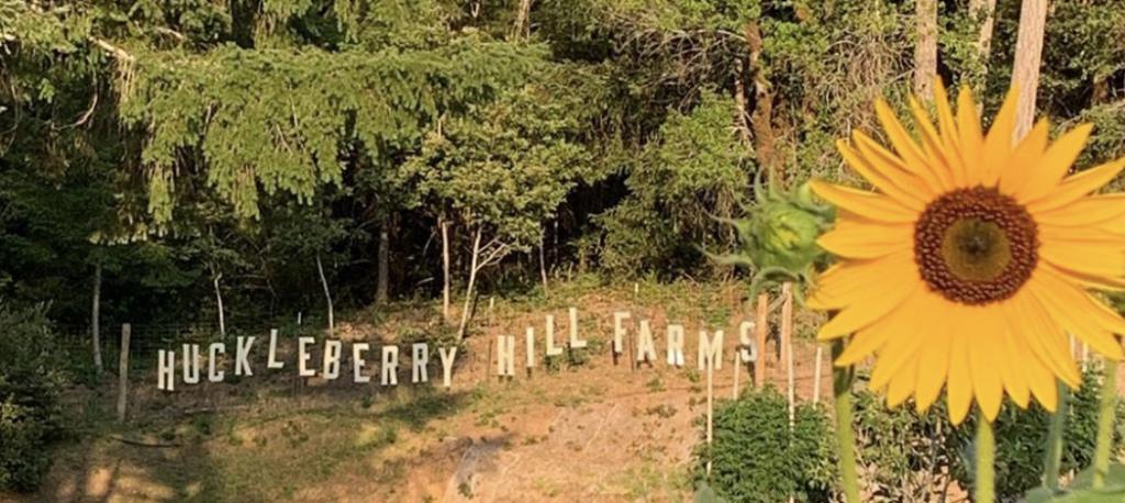 Huckleberry Hill farm