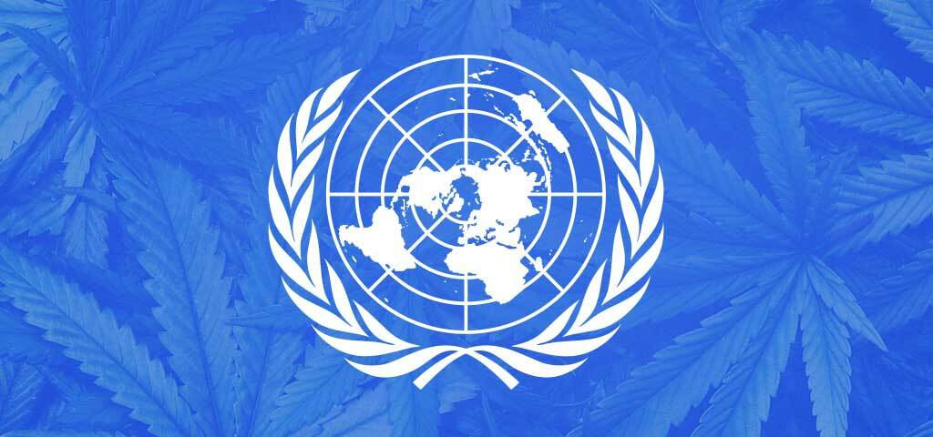 The UN flag with cannabis superimposed.