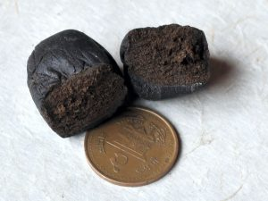 charas or hand rolled hash