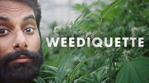 Krishna Andavolu posing next to cannabis and the title card for Weediquette