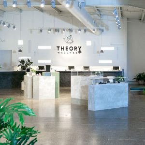 Theory Wellness dispensary