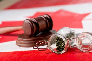New Jersey legalizes recreational cannabis
